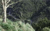1954 & 1957 Urewera National Park